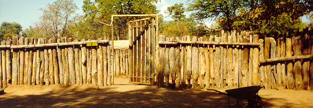 The rhinos' boma, July 1998
